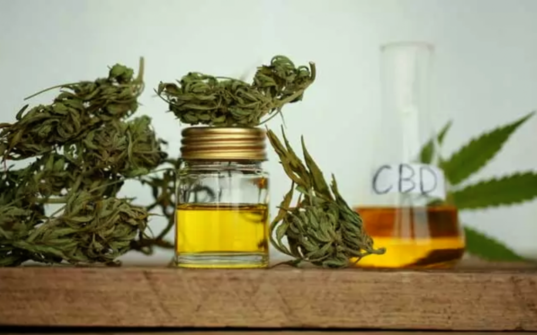 Monday Morning Memo: CBD Processing Made Easy